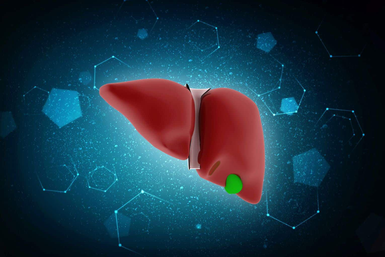 best liver herbal supplement in malaysia